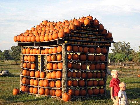 Happy Jack Pumpkin House