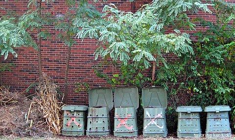 Compost bins Ryan manages in London Ferrell Community Garden, Kentucky