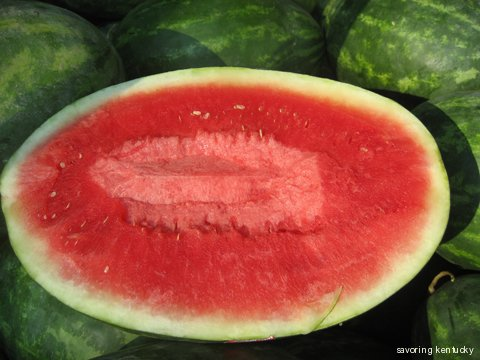 Watermelon from Casey County, Kentucky