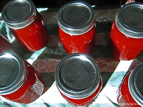 Finished, canned ketchup