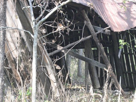 Through the tobacco barn toward the future