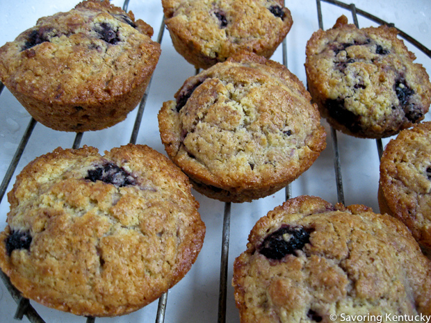 Mulberry Muffins cooling on a rack