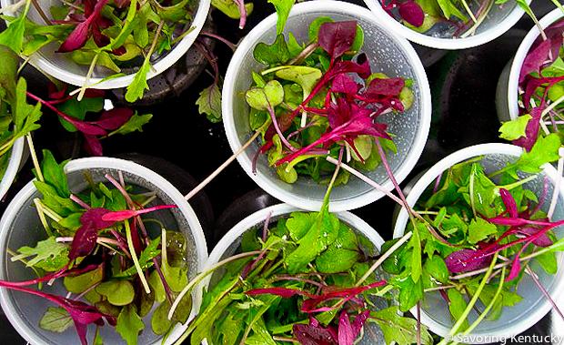 Long View Organics' Microgreens at Good Foods Market and Café, Lexington, Kentucky