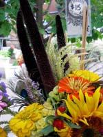 Hazelfield Flowers 3