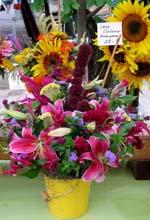 Hazelfield flowers 2