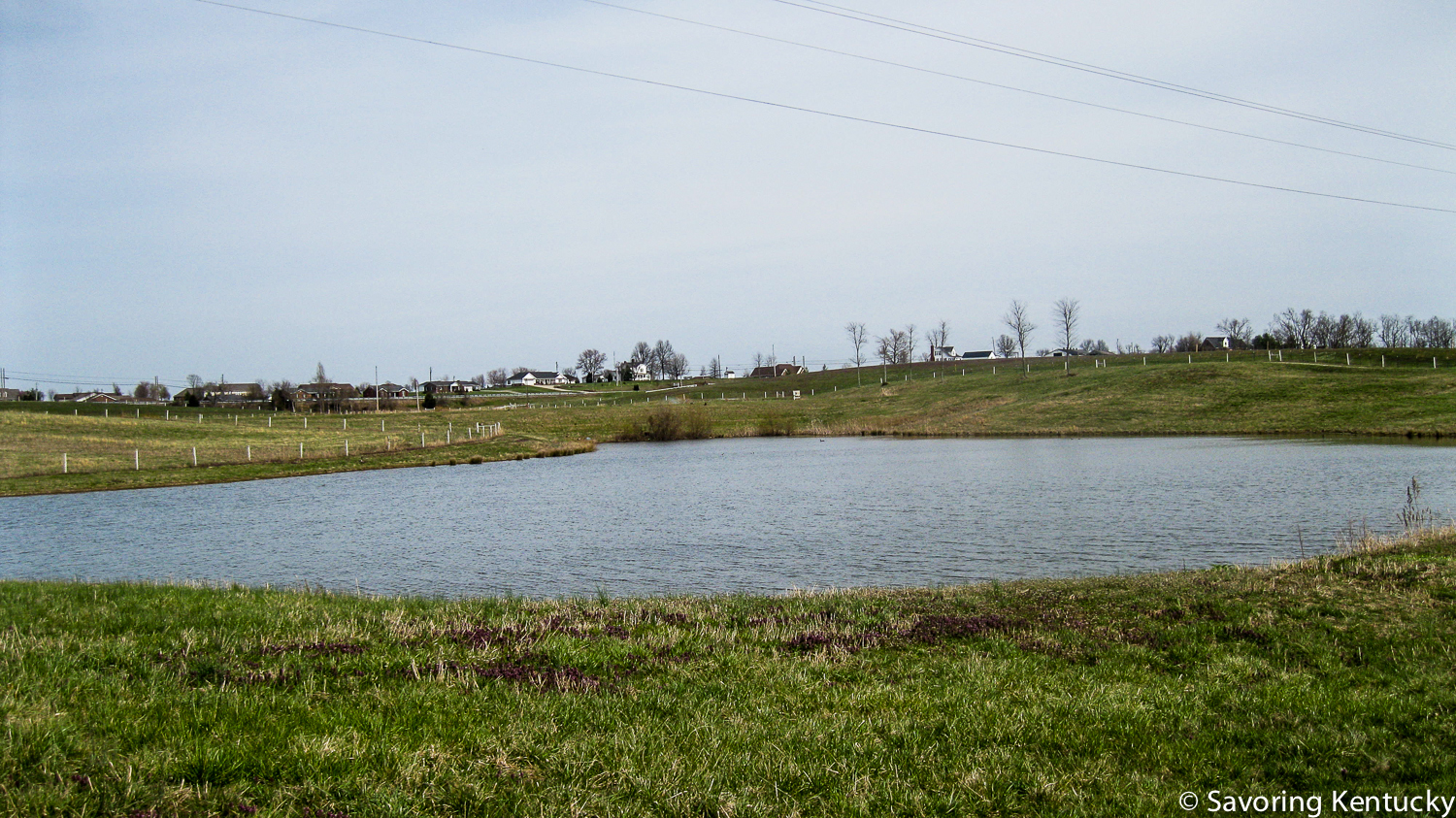 A view across the land at St. Catharine