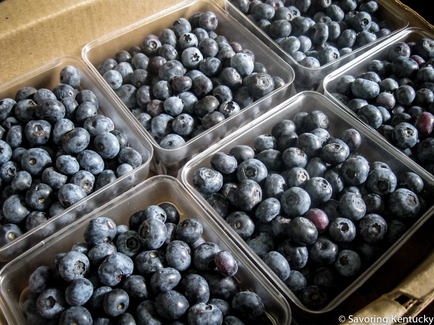 Reed Valley Orchard  blueberries, fresh in June, 2014, frozen and delicious in January 2015.