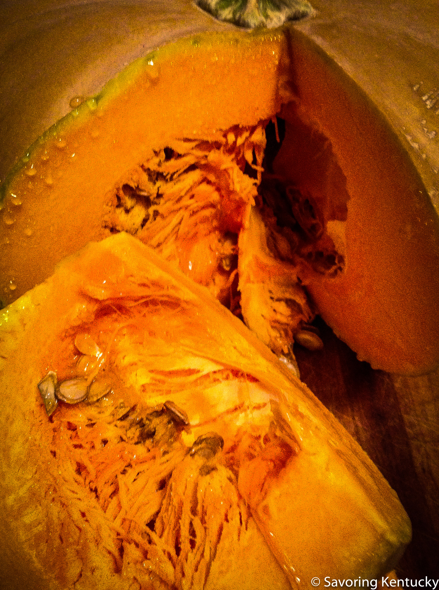 Winter squash, inside and out