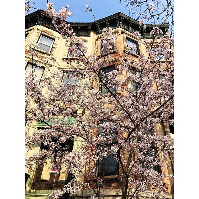 At last #spring