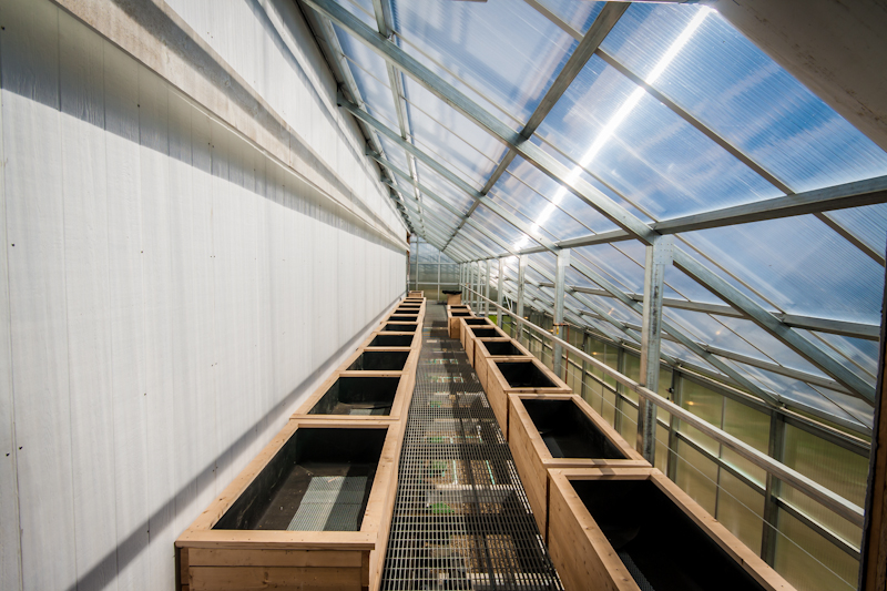 With a back to the heat exchanger, planter boxes for vegetables can be seen lining the mezzanine. Produce will be used in a CSA share for staff.