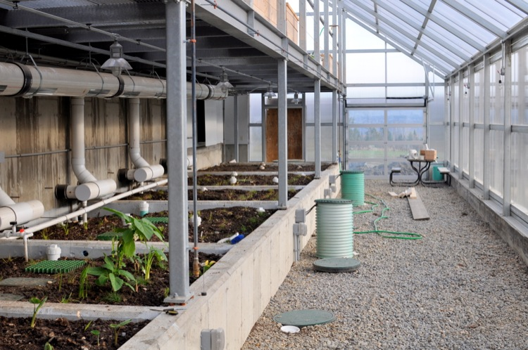 Once much of the heat is captured, the still warm air is discharged through the greenhouse floor for radiant heating.