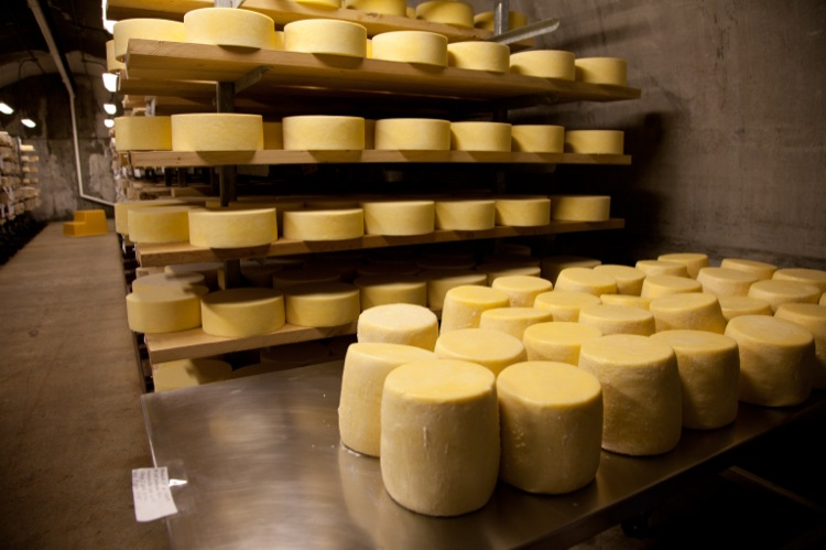 Cheeses arrive totally bare, just following the salting stage of cheese-making.