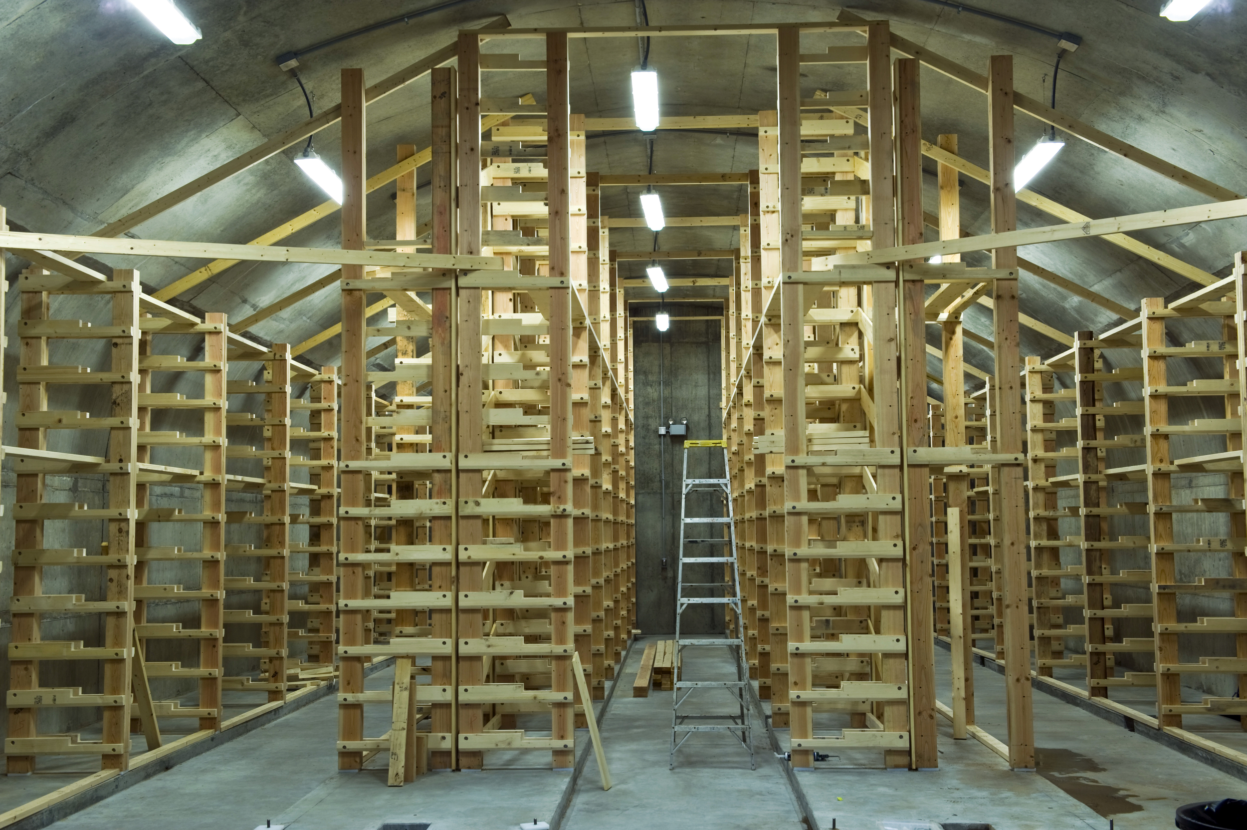 Wooden shelving in the cheddar vaults is designed to accomodate about 3000 aging 34 pound wheels.