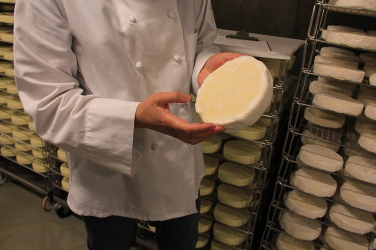 Bloomy rind cheeses must be patted and turned regularly. They generally age for several weeks before wrapping and shipping.