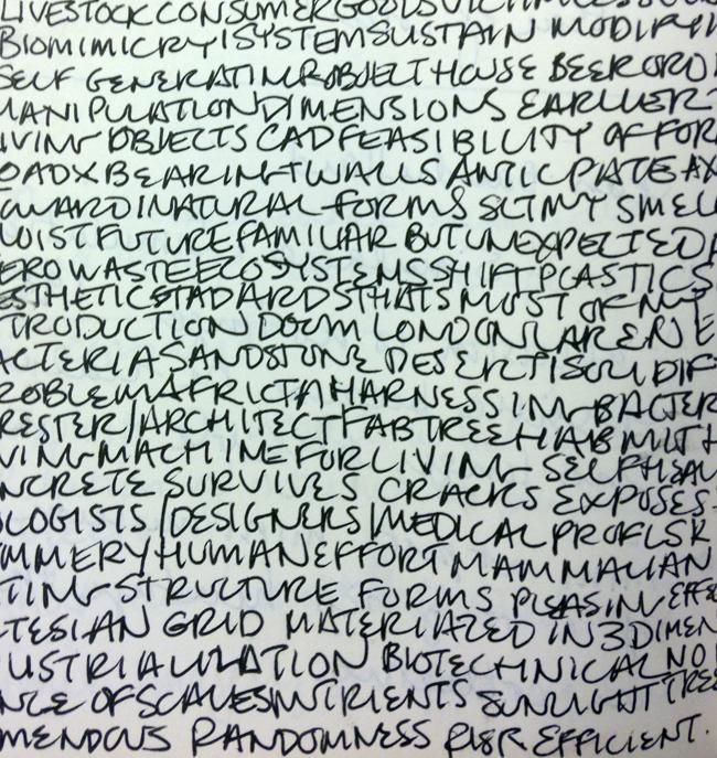 Scribblewriting.jpg