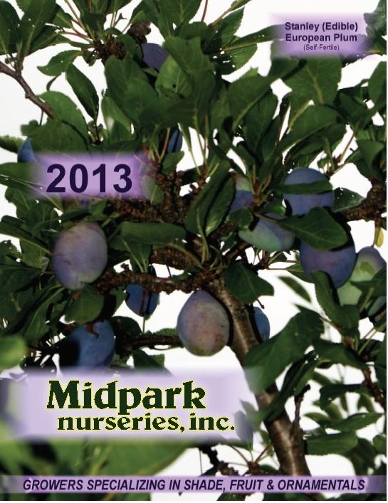 2013_Catalogue_Cover.jpg