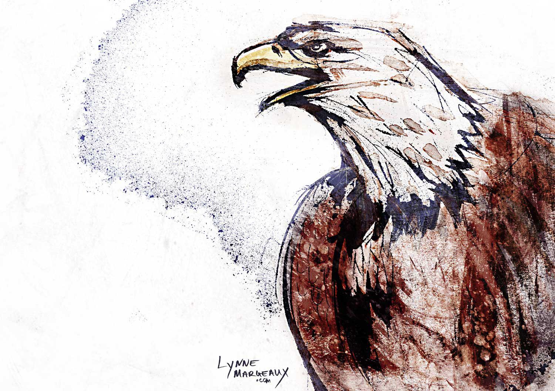 Eagle 1