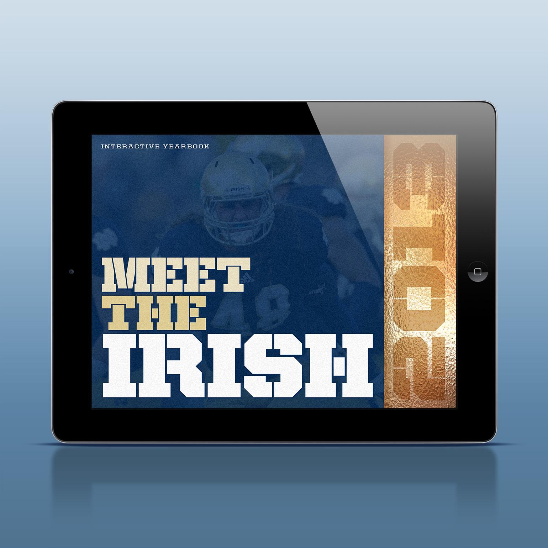 meet the irish.jpg