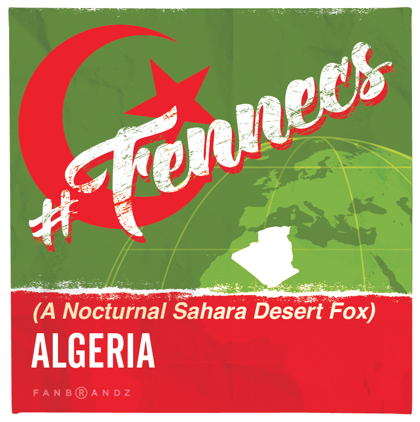 worldcup2014_algeria
