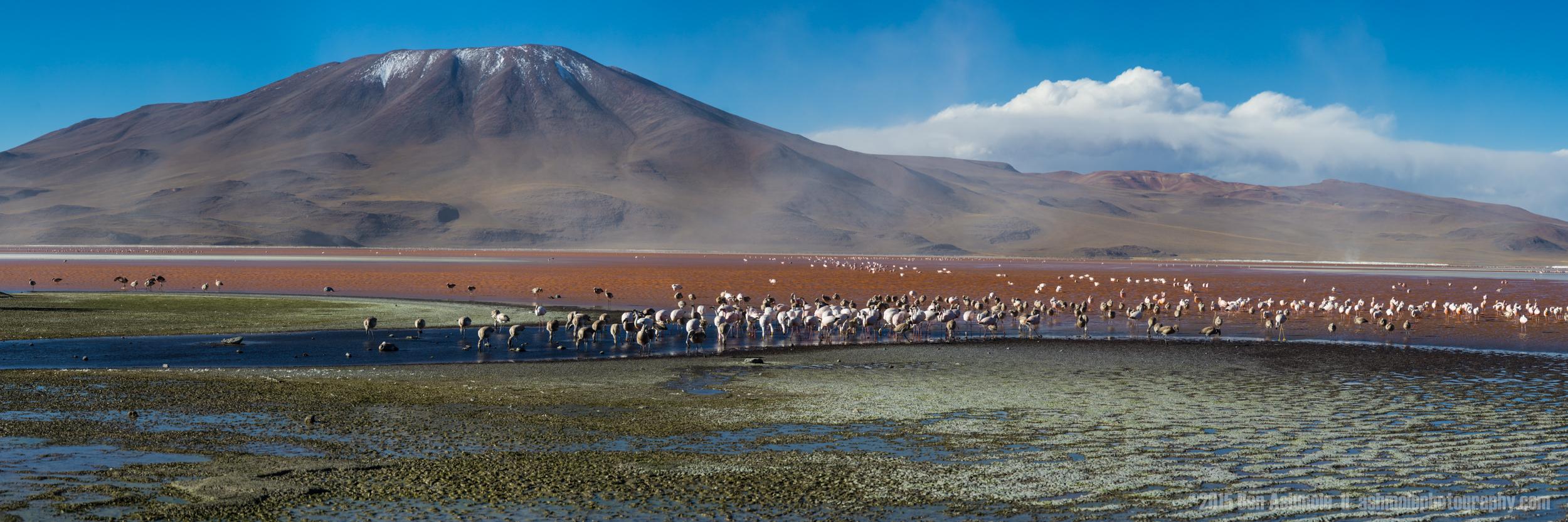 Lago Colorada Panorama, Bolivia