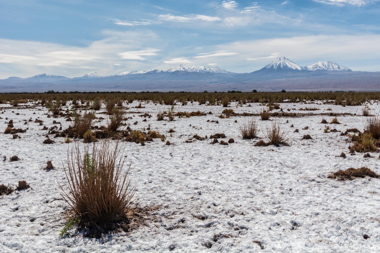 Salt Covered Desert, San Pedro De Atacama, Chile