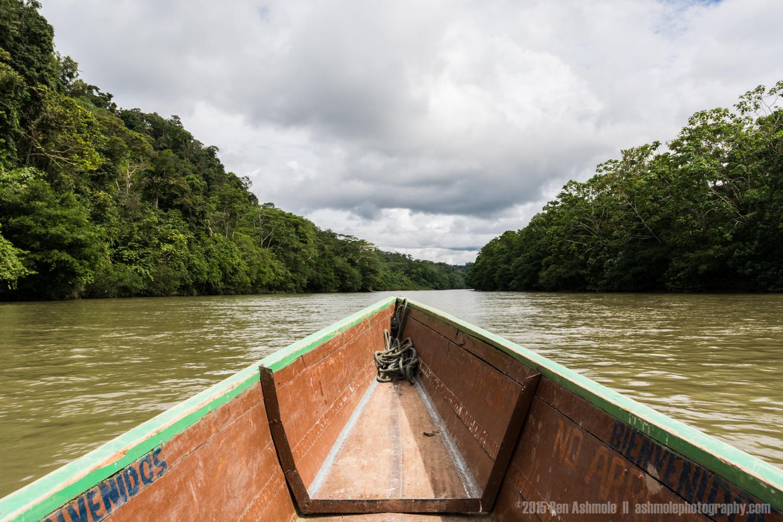 Boat Ride, Amazon Rainforest, Tena, Ecuador