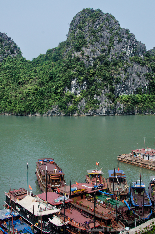 The Boats Portrait, Ha Long Bay, Vietnam