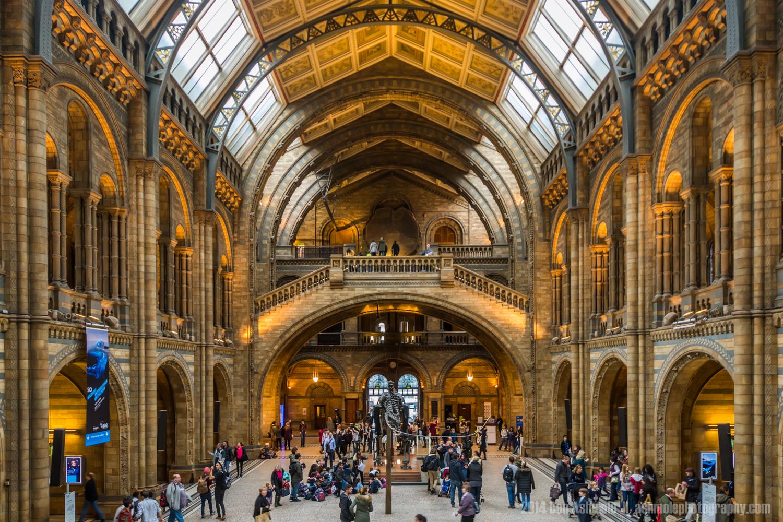 Hintze Hall, Natural History Museum, London, UK
