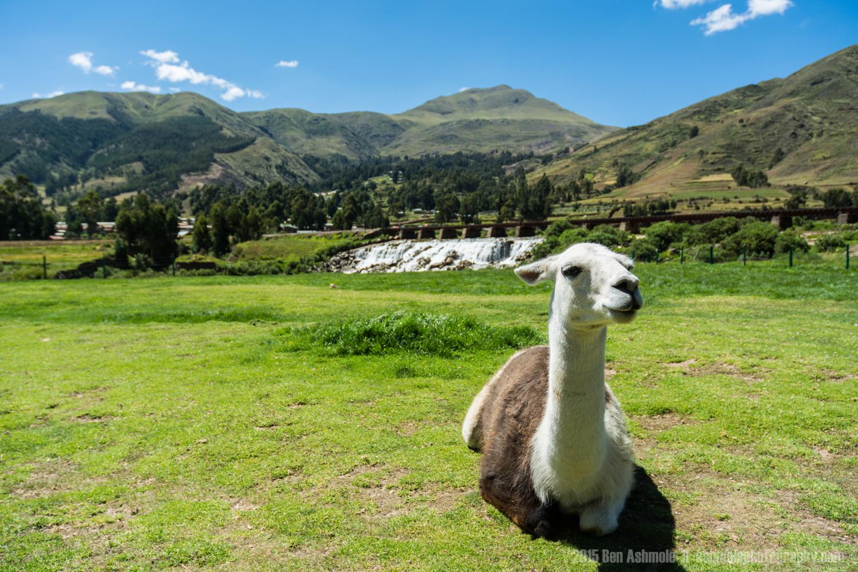 La Paz To Cusco (2).jpg
