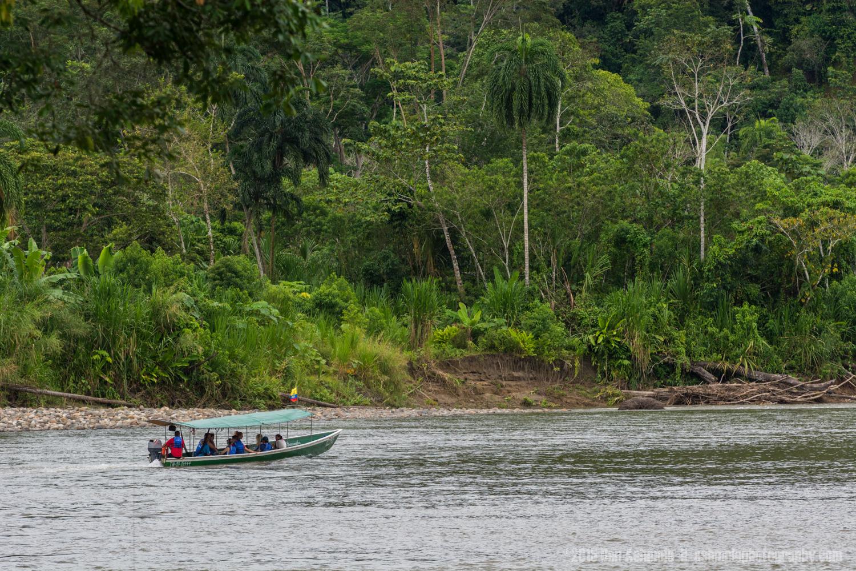 Amazon Boat Trip, Tena, Ecuador