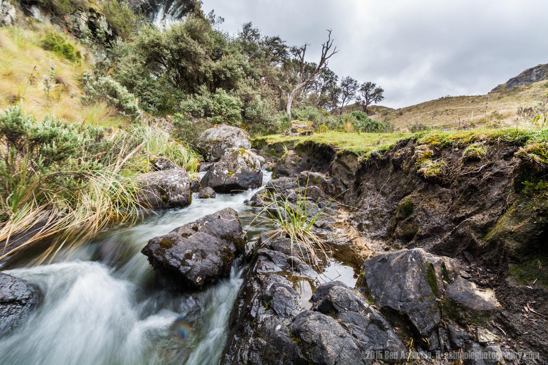 Cajas National Park 6, Ecuador