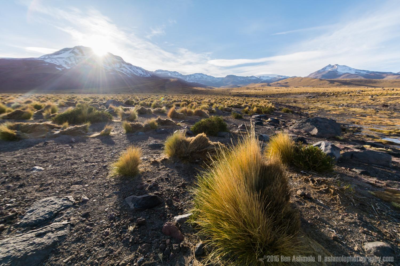 Early Morning, San Pedro De Atacama, Chile