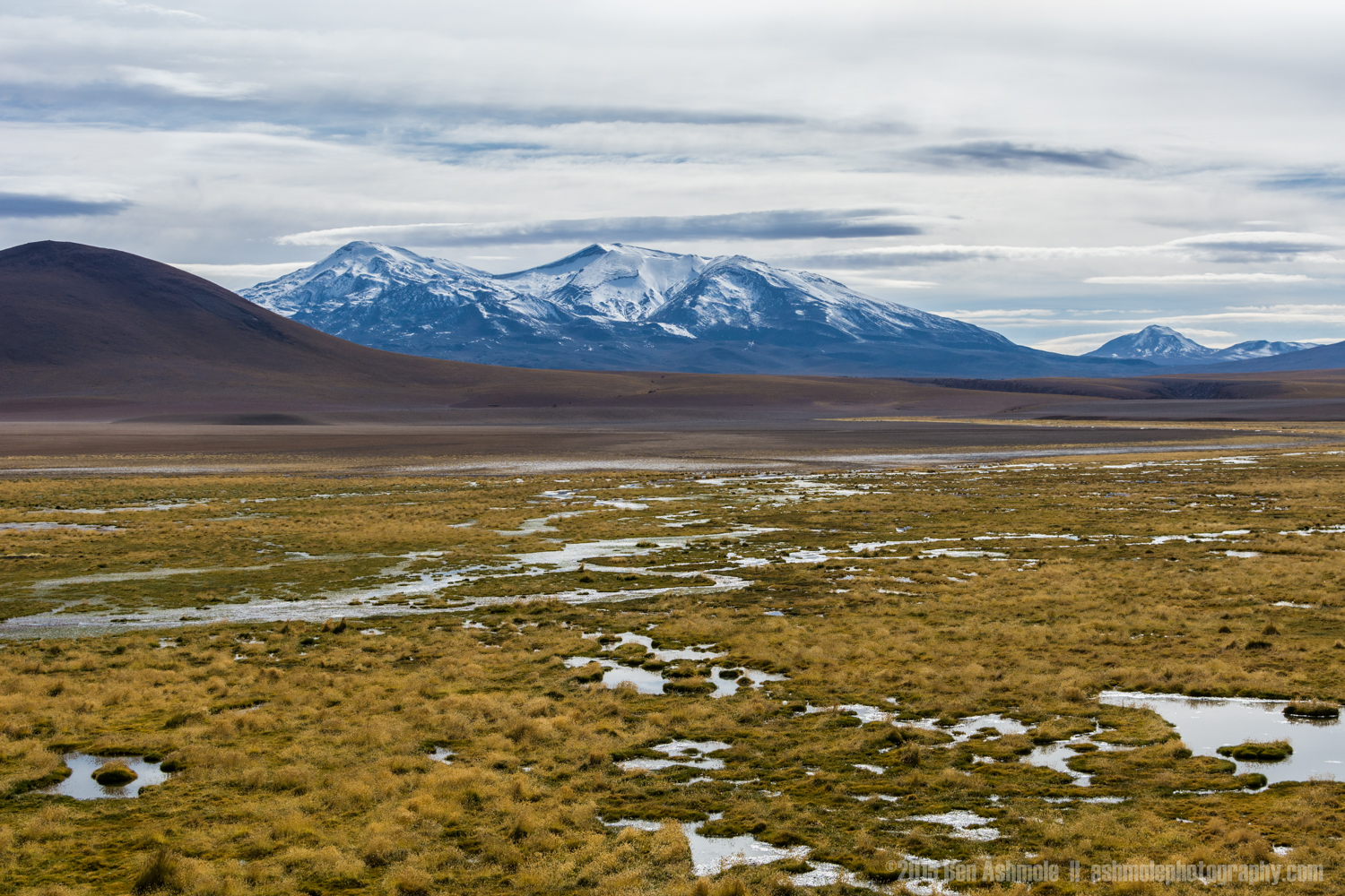 Andean Marsh Land, Chile