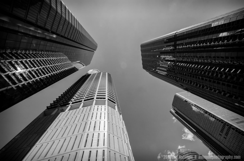 Looking Up, Brisbane Australia, Ben Ashmole