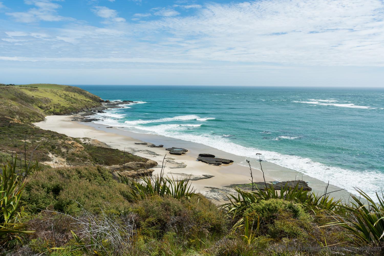 Beach, Bay Of Islands, New Zealand