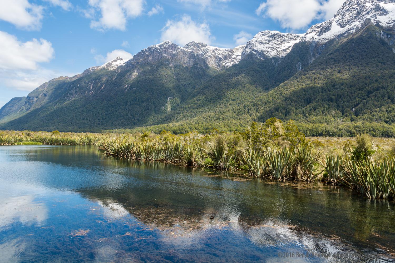 Fjordland Reflections, Fjordland National Park, New Zealand