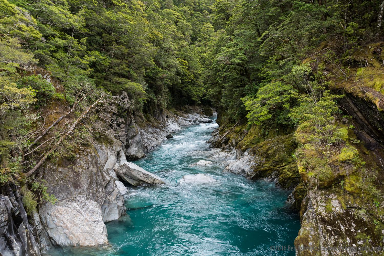 Forest River, Frans Joseph, Westland National Park, New Zealand