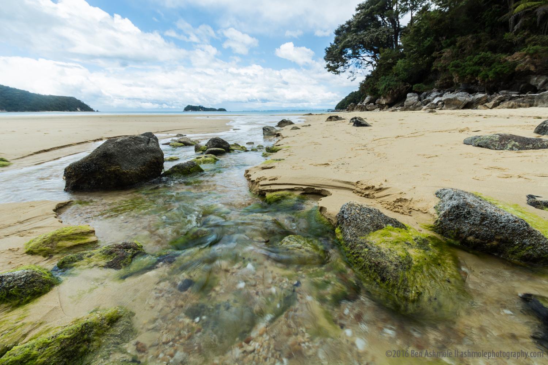 Beach Stream, Abel Tasman National Park, New Zealand