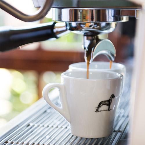 Terbadore Coffee