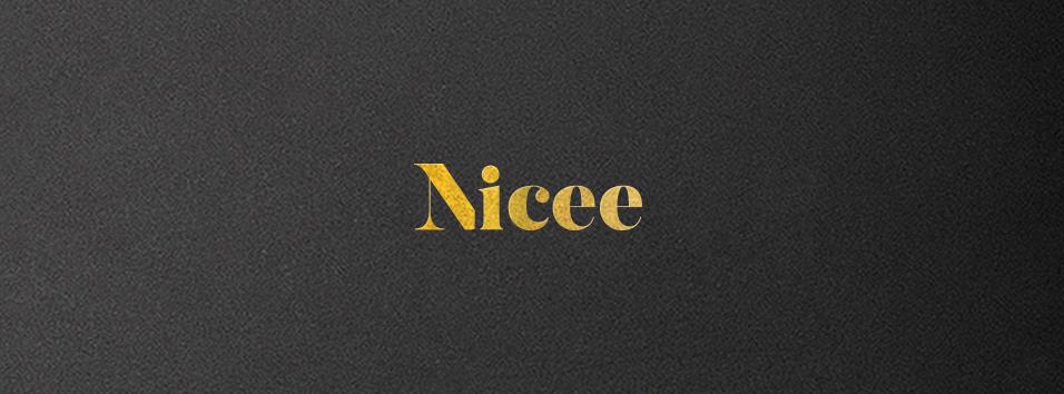 03-2_Nicee.jpg