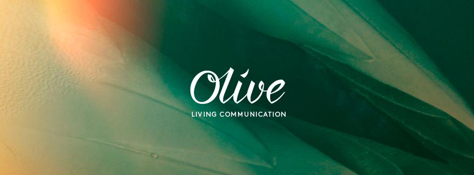 01-2_Olive.jpg