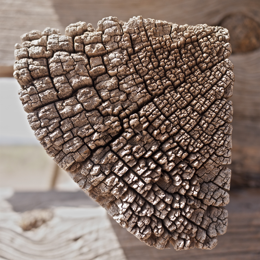 woodgrain-1web.jpg