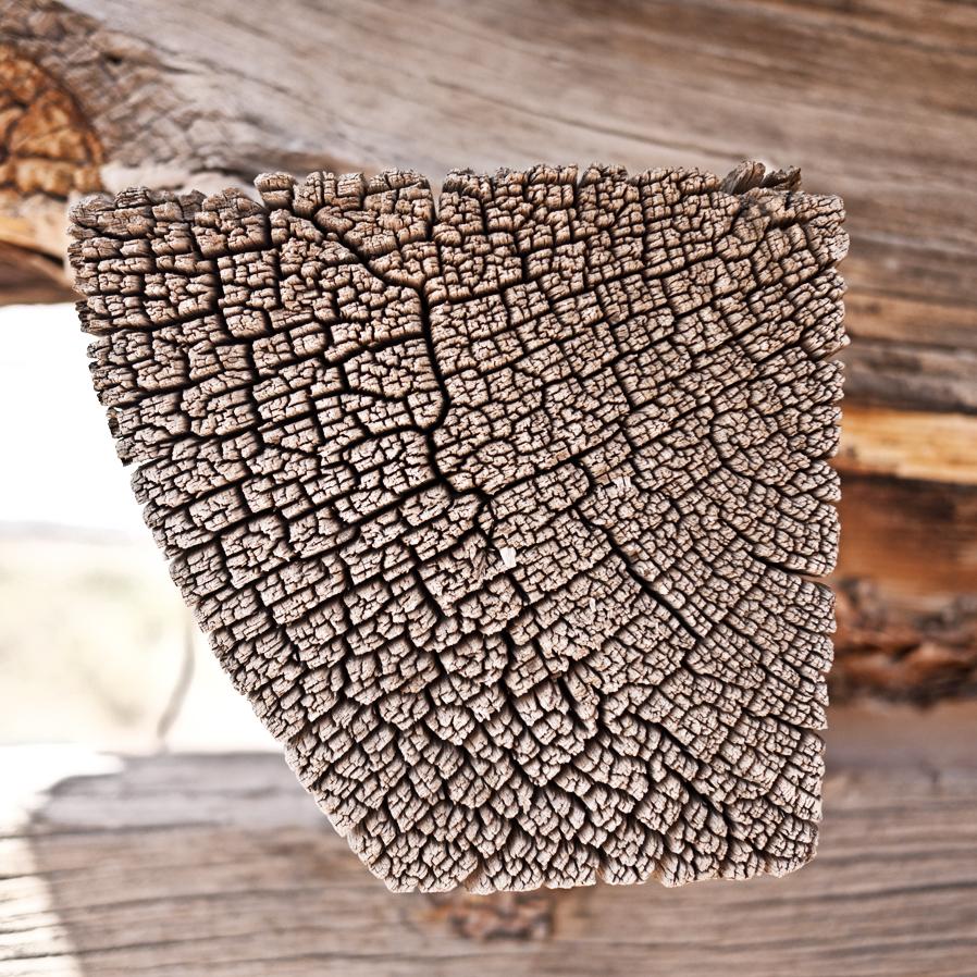 woodgrain-02web.jpg