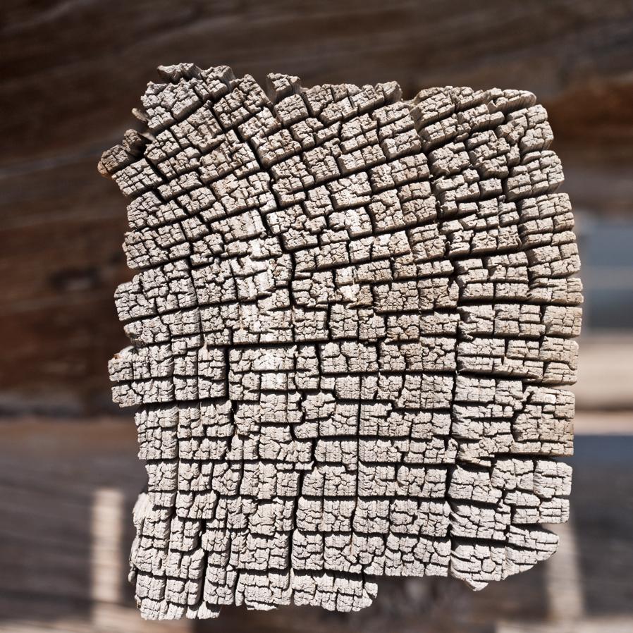 woodgrain-04web.jpg