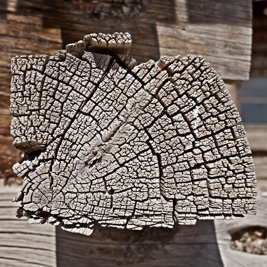 woodgrain-05web.jpg