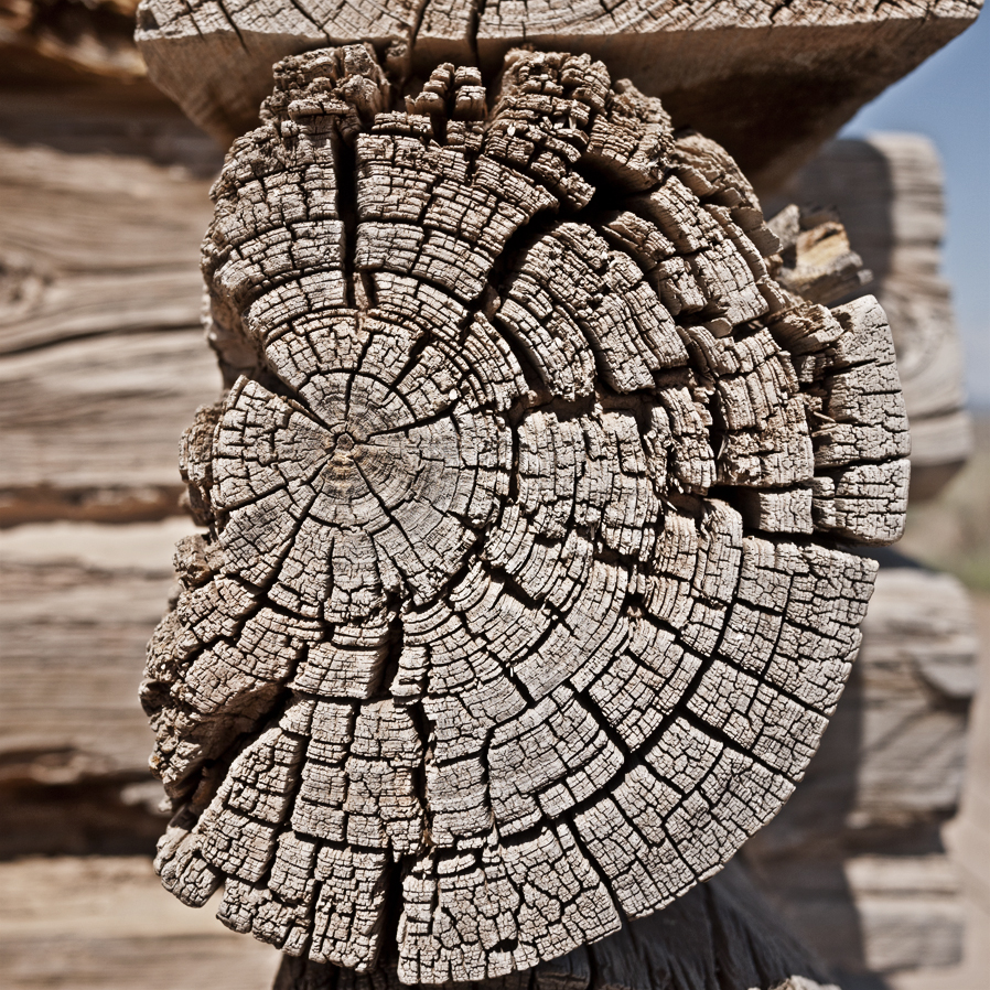 woodgrain-06web.jpg
