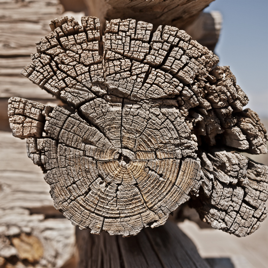 woodgrain-09web.jpg