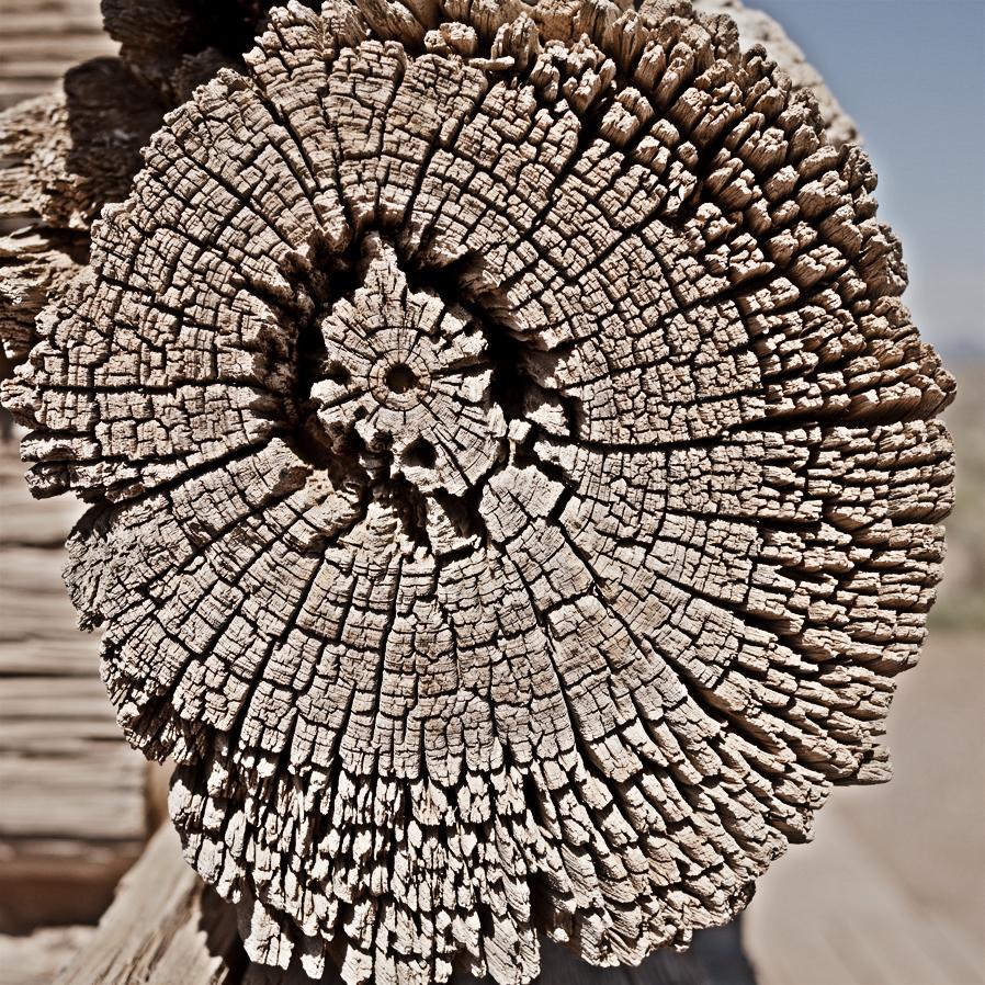 woodgrain-10web.jpg