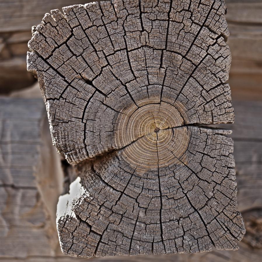 woodgrain-12web.jpg