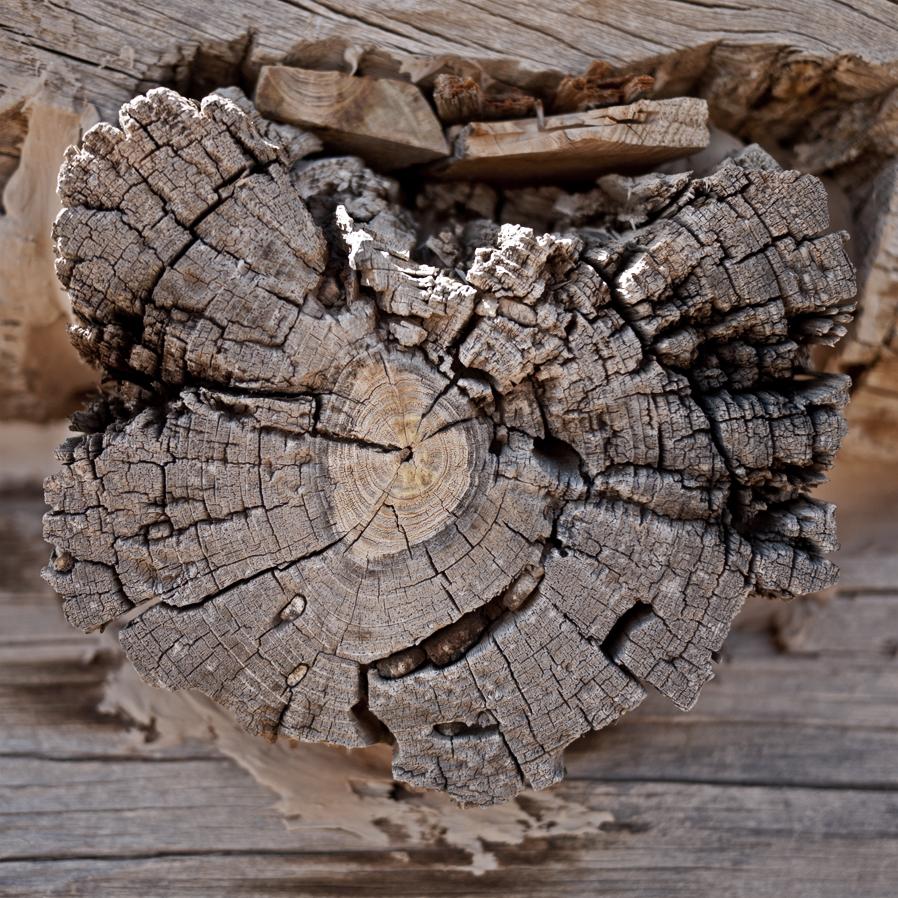 woodgrain-13web.jpg